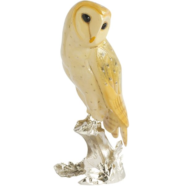 Nature's Realm Barn Owl